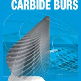 Carbide burr bit